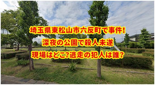 華蔵寺 公園 事故
